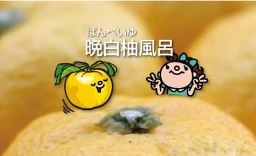 冬至はギネスにも認定されている大きな柚子「晩白柚」風呂に入ろう♪